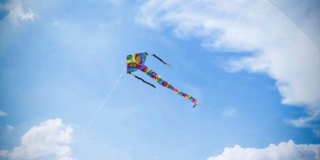 Scare'm Delta kite